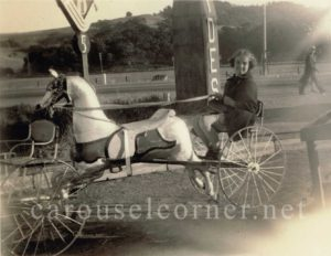 Carousel-horse-bicycle