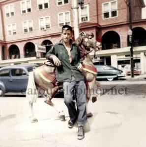 Dentzel_carousel_horse_03